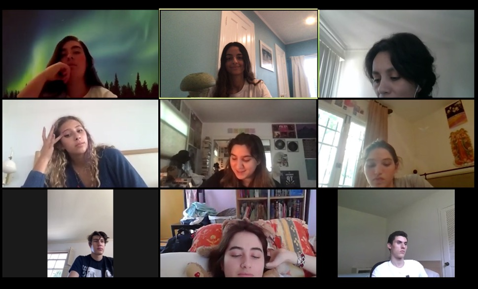 screeshot of students learning over video videochat